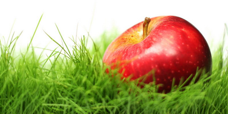 Притча: Яблуко в траві