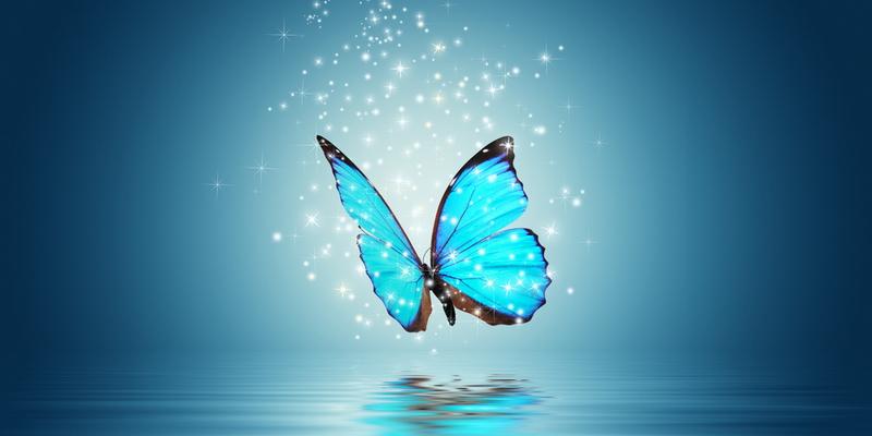 Притча: Два метелики