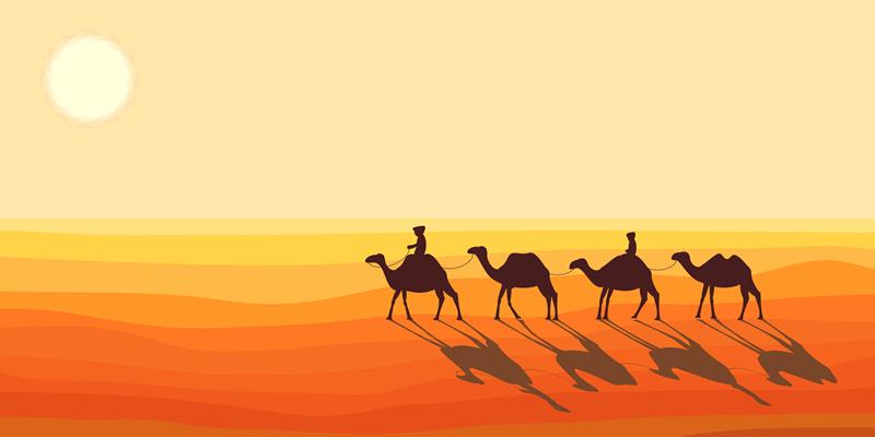 Притча: Як поділити 19 верблюдів
