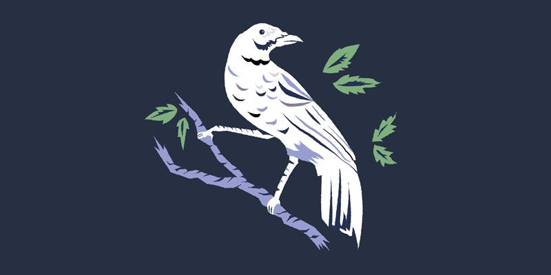 Притча: Біла ворона